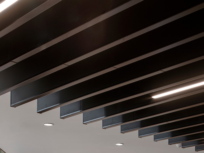 SAS500 metal ceiling